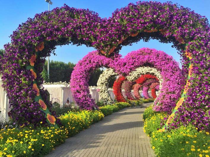 Miracle Garden Dubai with Transfers