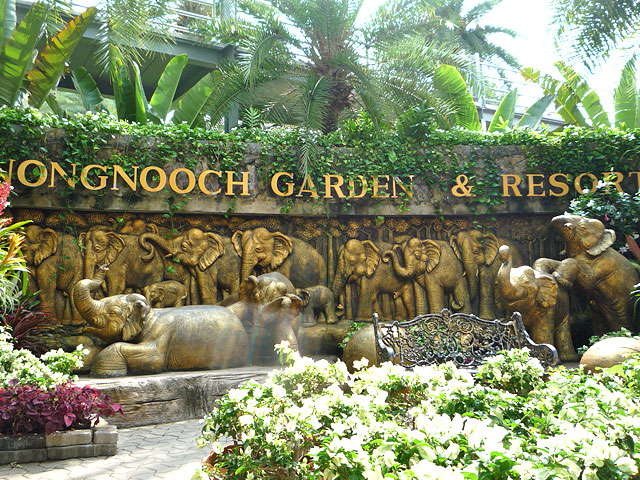 Nong Nooch Tropical Garden Ticket